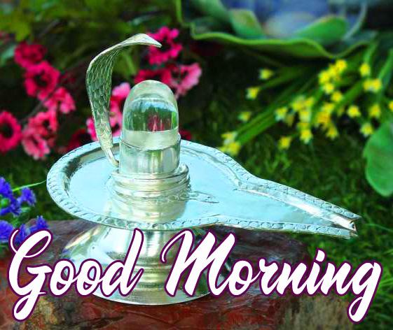 Latest Mahadev Good Morning Image