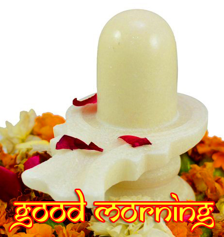 Pure White Shivlinga Mahadev Good Morning Image